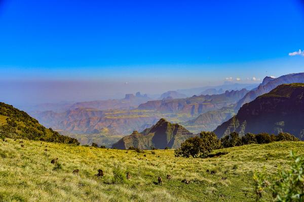 TREG SIMIEN TRAIL Cap sur l'Ethiopie